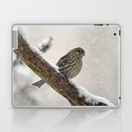 Facing the Storm (House Finch) Laptop & iPad Skin