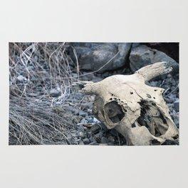 Desert Skull Two Rug