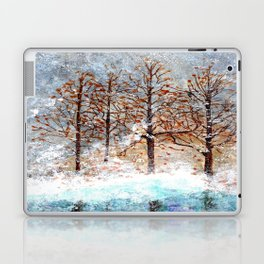 Snow Flurries on Moon Lake up Dewdrop Holler Laptop & iPad Skin