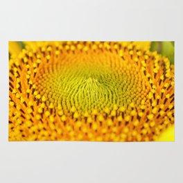 Little bet of sun flower..... Rug