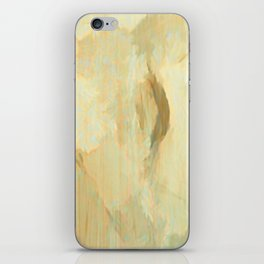 Somewhere Out There iPhone Skin