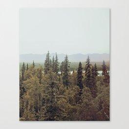Denali 2 Canvas Print