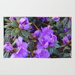 Ramapo Rhododendron Rug