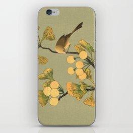 Bird in Ginkgo Tree iPhone Skin