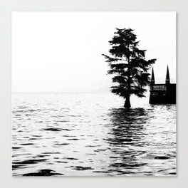 Fir in the water Canvas Print