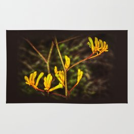 Yellow Kangaroo Paw flower against a blurred background Rug