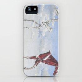 PushMePullYou iPhone Case