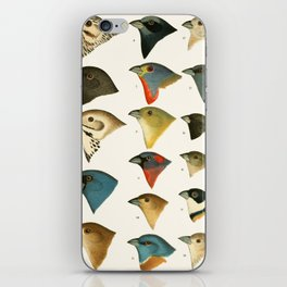 North American Birds iPhone Skin