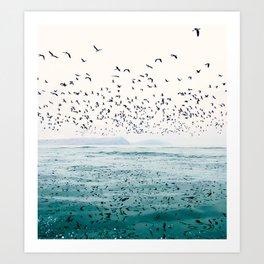 Birds Reflected Fine Art Print Art Print