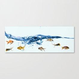 Keep swiming Canvas Print