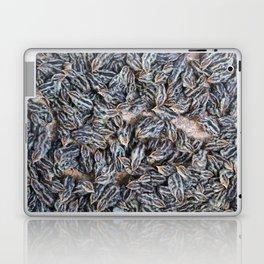 Chinese Chicks Laptop & iPad Skin