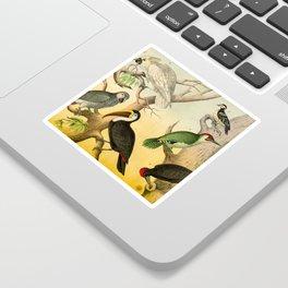 6 Birds Sticker