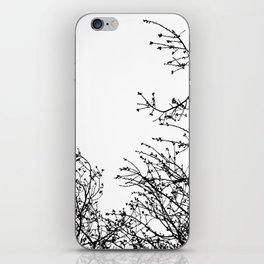 Zebra Branches iPhone Skin