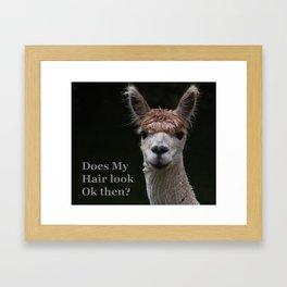 Funny hairstyle alpaca Framed Art Print