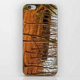 Tangerine forest iPhone Skin