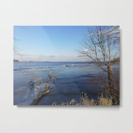More Than Seven Swans A Swimming And A Sitting On The Second Day Before Christmas Metal Print