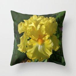 Golden Iris flower - 'Power of One' Throw Pillow
