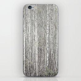 Birch grove iPhone Skin