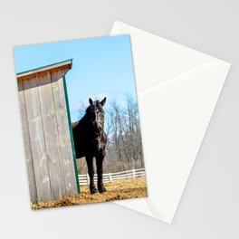 Percheron Horse by Teresa Thompson Stationery Cards