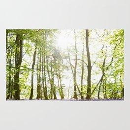 Sunlight Shining on Bluebells in a Woodland Rug