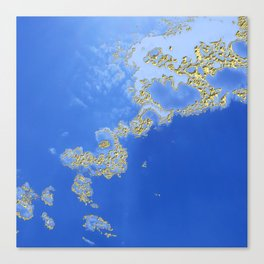 Orencyel : sky gazing before this golden melody Canvas Print
