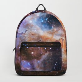 Westerlund 2 - Hubble's 25th Anniversary Backpack