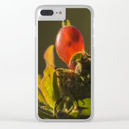 Translucency Clear iPhone Case