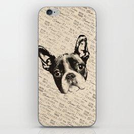 Boston Terrier dog iPhone Skin
