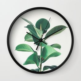 Rubber Fig Wall Clock