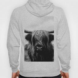Scottish Highland Cattle Black and White Animal Hoody