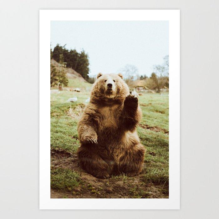 Hi Bear Kunstdrucke