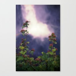 Falls and Flowers Canvas Print