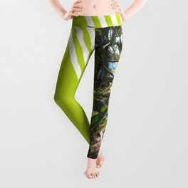 Wattle I do in Vincentia Leggings