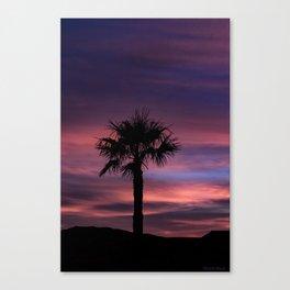 Palm Sunset - 8 Canvas Print