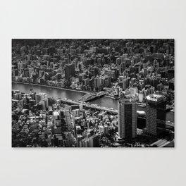Find me (Tokyo) Canvas Print