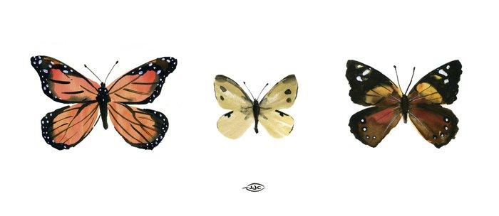 Garden Butterflies Coffee Mug