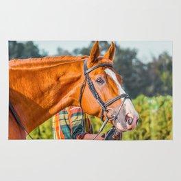 Horse head photo closeup Rug