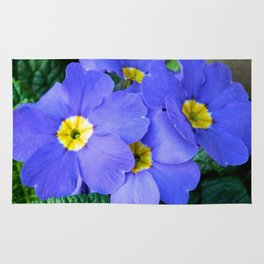 Blue Heartsease Flower Rug