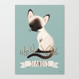 Siamese Cat Canvas Print