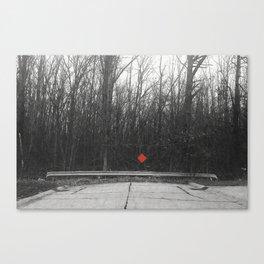nowwhat Canvas Print