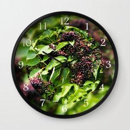 Elderberry fruits fresh clusters Wall Clock