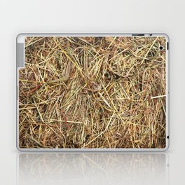 Hay texture Laptop & iPad Skin