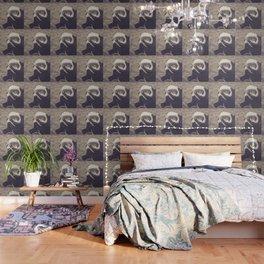 Adorable African Penguin Series 4 of 4 Wallpaper