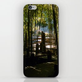 Through The Bamboo iPhone Skin