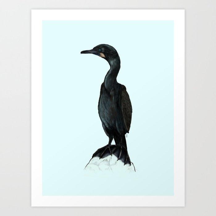 Brandt's Cormorant Art Print