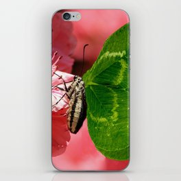 Lucky Butterfly iPhone Skin