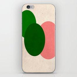 Peach Green Vintage Mod Circles iPhone Skin