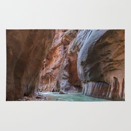 All Seeing Gopher (The Narrows, Zion National Park, Utah) Rug