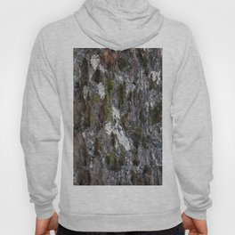 Old tree with character Hoody