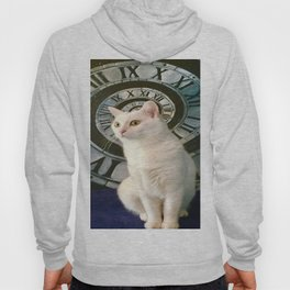 The mysterious kitty Tyche Hoody